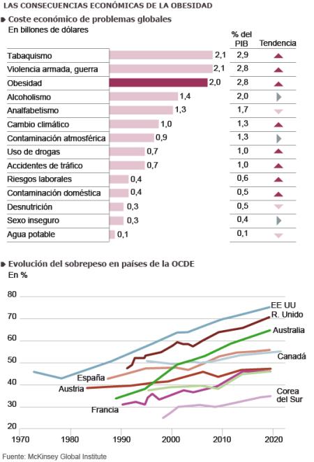 El coste de la obesidad , El Pais 1