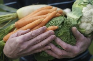 160407131515_verduras_624x415_thinkstock_nocredit